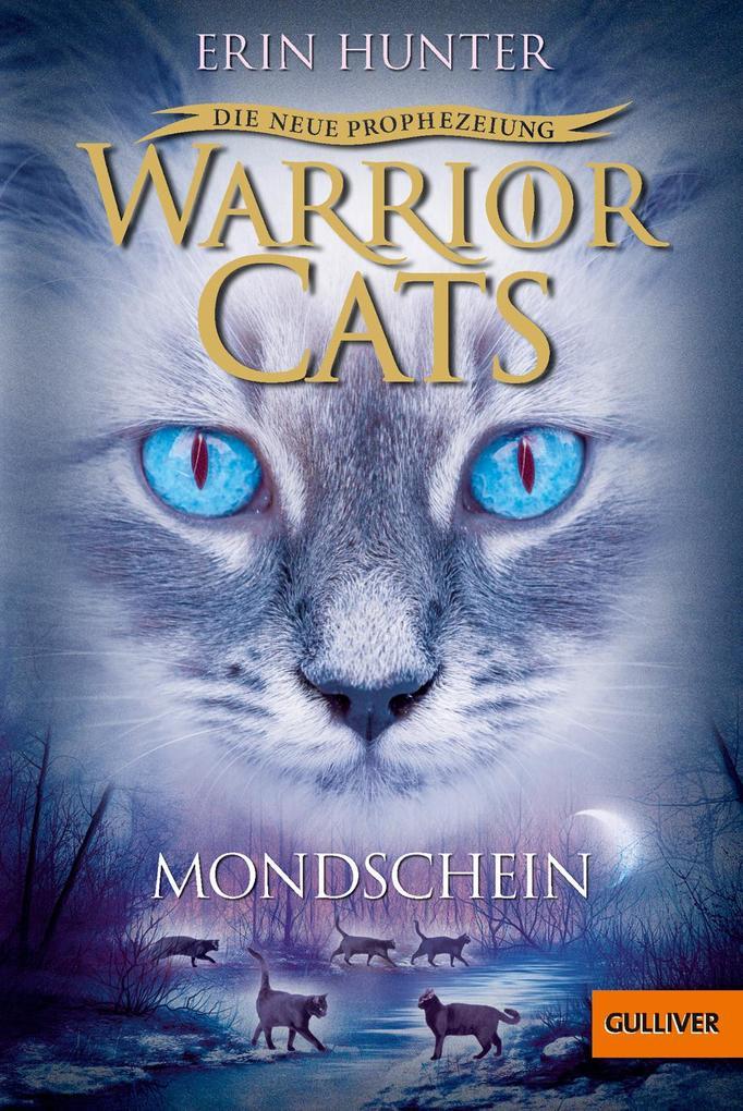 Taschenbuch Warrior Cats Staffel  Band