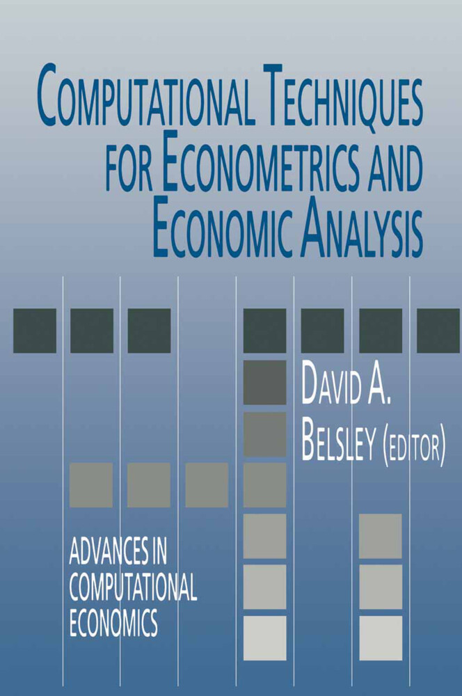 Computational Techniques for Econometrics and Economic Analysis als Buch
