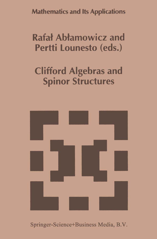 Clifford Algebras and Spinor Structures als Buch