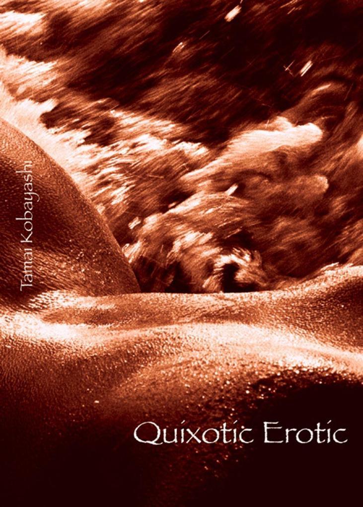Quixotic Erotic als Taschenbuch