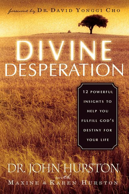 Divine Desperation: 12 Powerful Insights to Help You Fulfill God's Destiny for Your Life als Taschenbuch