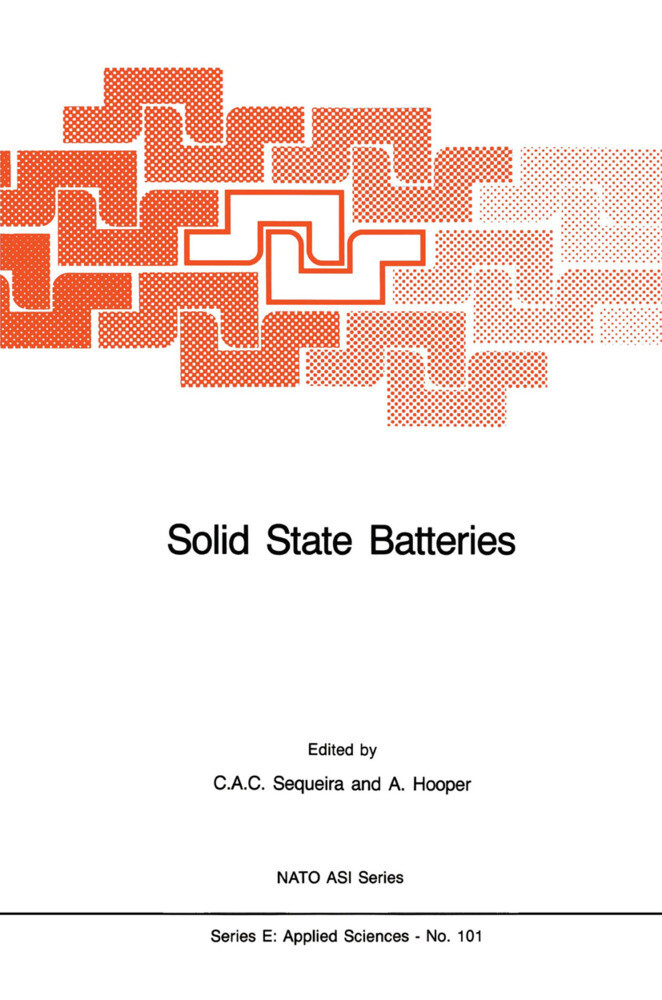 Solid State Batteries als Buch