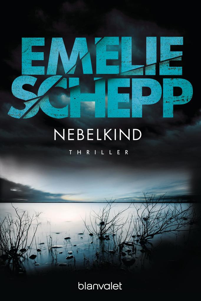 Nebelkind als eBook