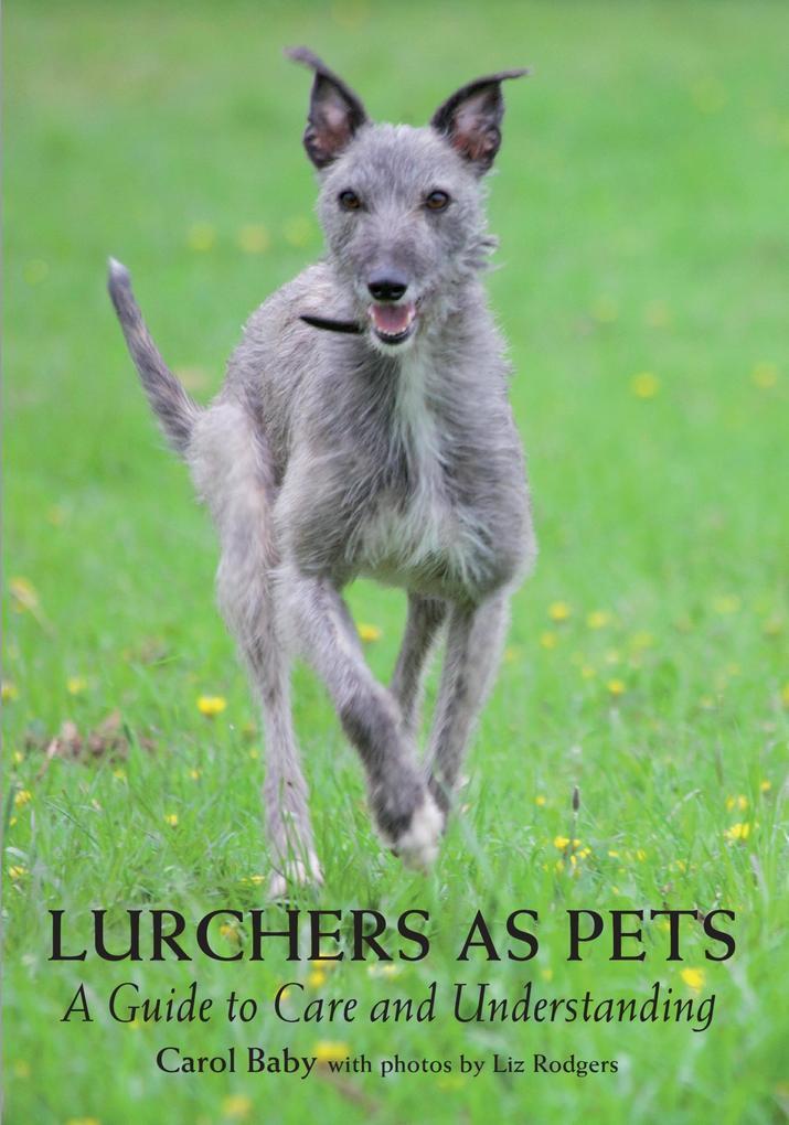 Lurchers as Pets als eBook Download von Carol Baby