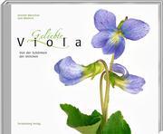 Geliebte Viola