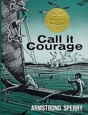 Call It Courage als Buch