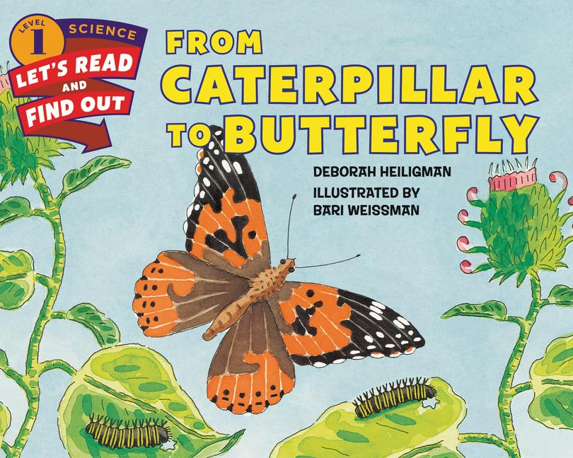 From Caterpillar to Butterfly als Buch