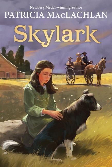 Skylark als Taschenbuch