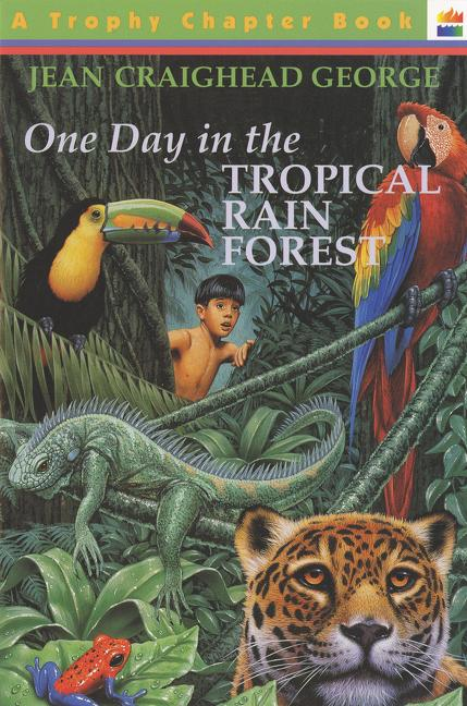 One Day in the Tropical Rain Forest als Taschenbuch