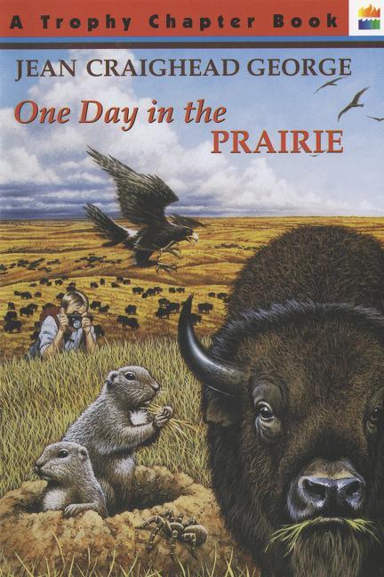 One Day in the Prairie als Taschenbuch