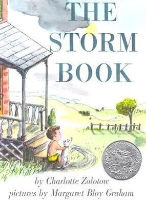 The Storm Book als Taschenbuch