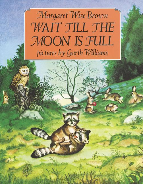 Wait Till the Moon Is Full als Taschenbuch