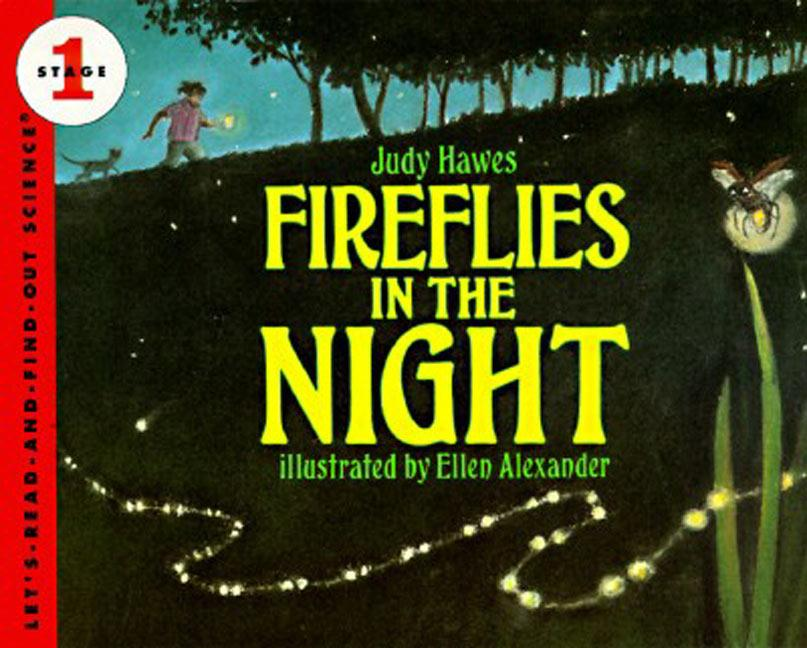Fireflies in the Night als Taschenbuch