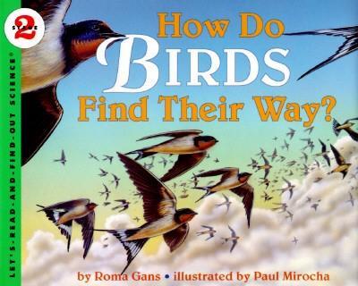 How Do Birds Find Their Way? als Taschenbuch