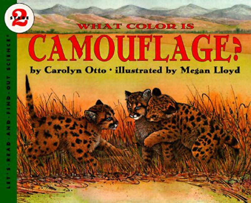 What Color Is Camouflage?: An Incredible Story of Hope, Triumph, and Everyday Joy als Taschenbuch