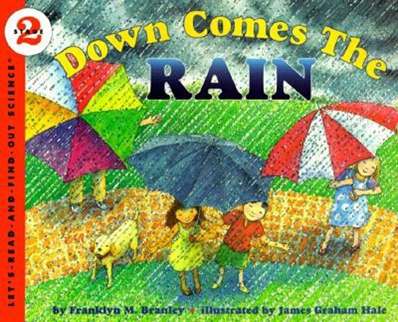 Down Comes the Rain als Taschenbuch