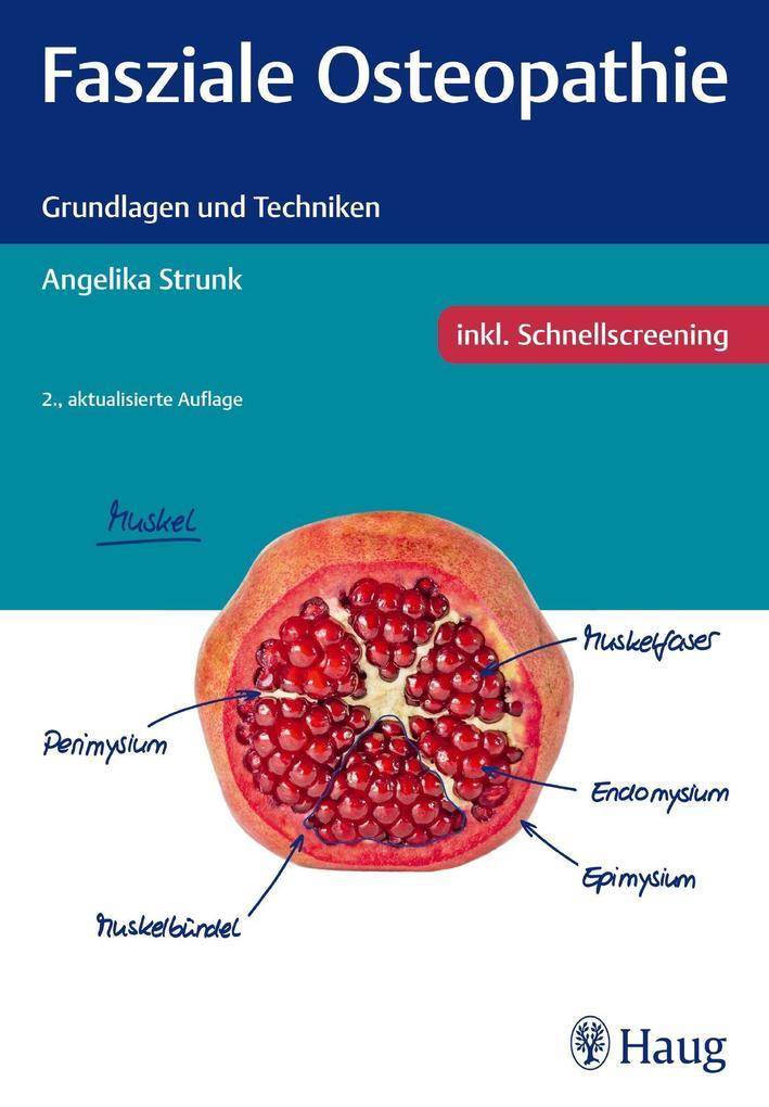 Fasziale Osteopathie als Buch von Angelika Strunk