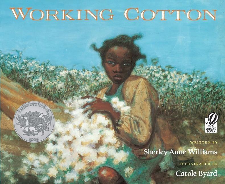 Working Cotton als Taschenbuch
