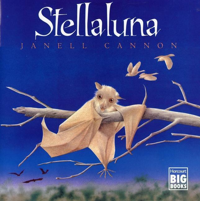 Stellaluna als Taschenbuch