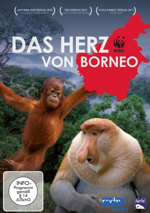 Borneo im radio-today - Shop