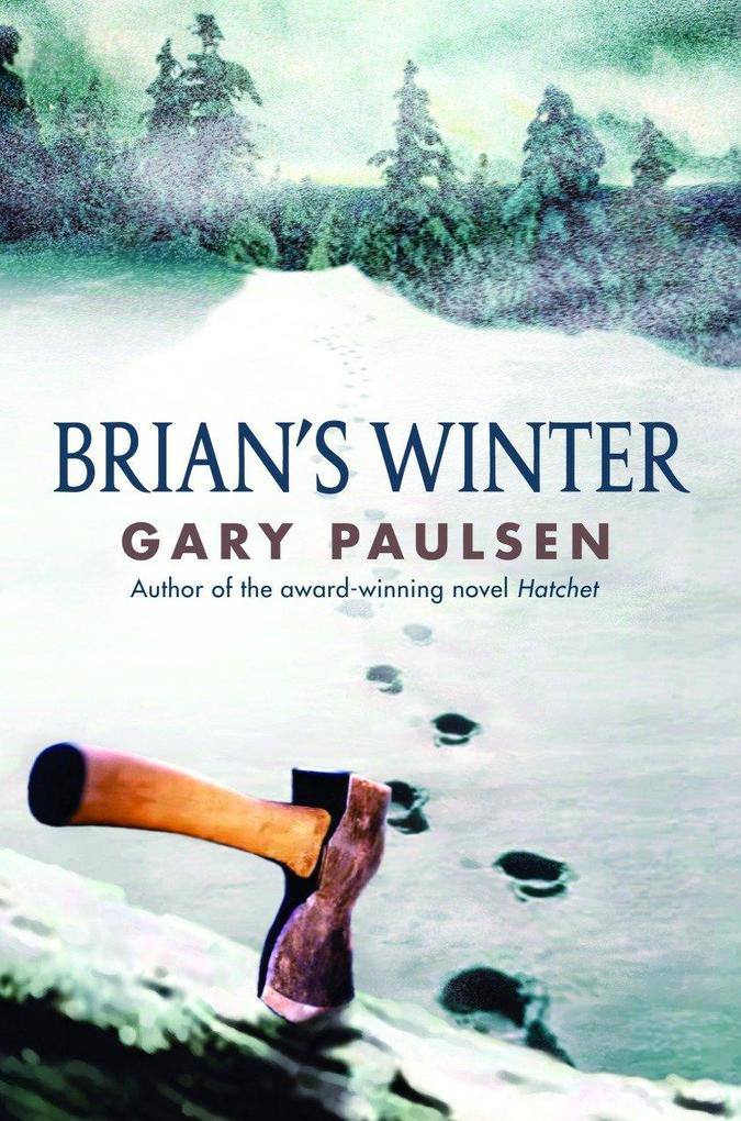 Brian's Winter als Buch
