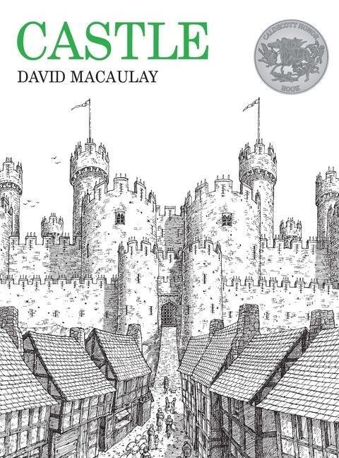 Castle als Taschenbuch