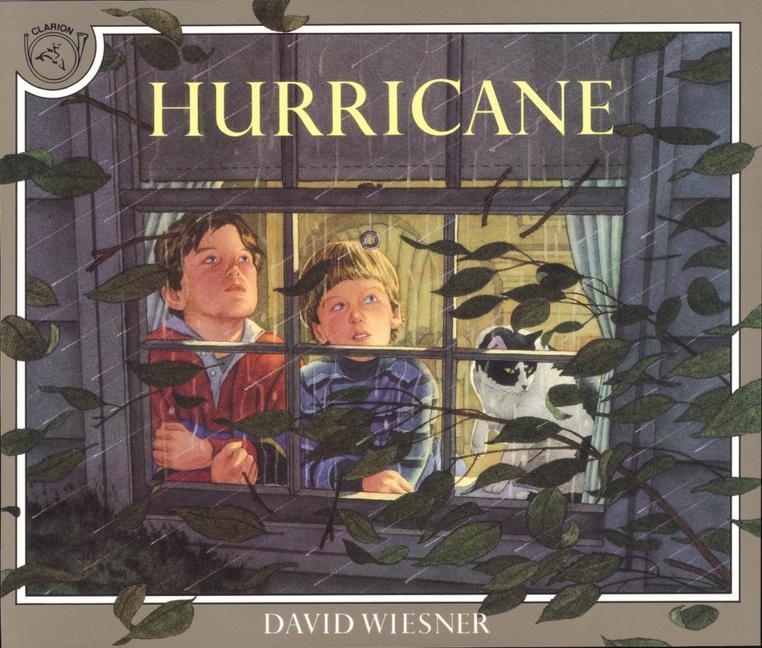 Hurricane als Taschenbuch