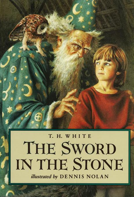 SWORD IN THE STONE als Buch