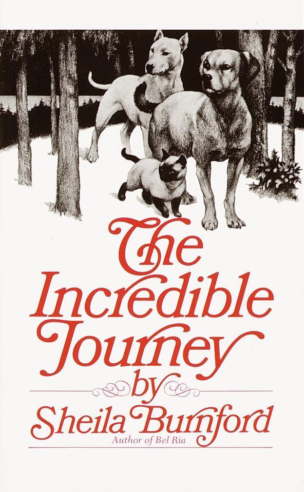Incredible Journey als Taschenbuch