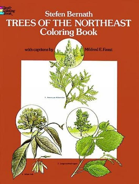 Trees of the Northeast Coloring Book als Taschenbuch