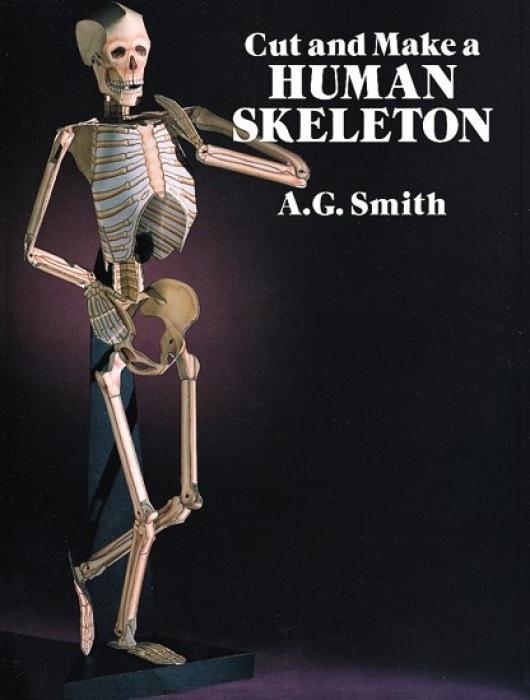 Cut and Make a Human Skeleton als Taschenbuch