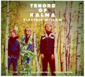 Electric Willow (Feat. Jimi Tenor & Kalle Kalima)