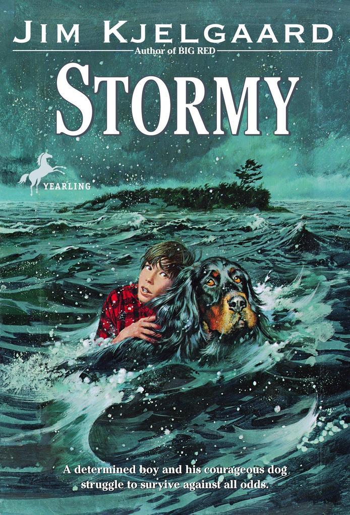Stormy als Taschenbuch