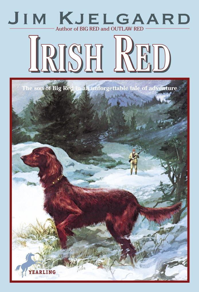 Irish Red als Taschenbuch
