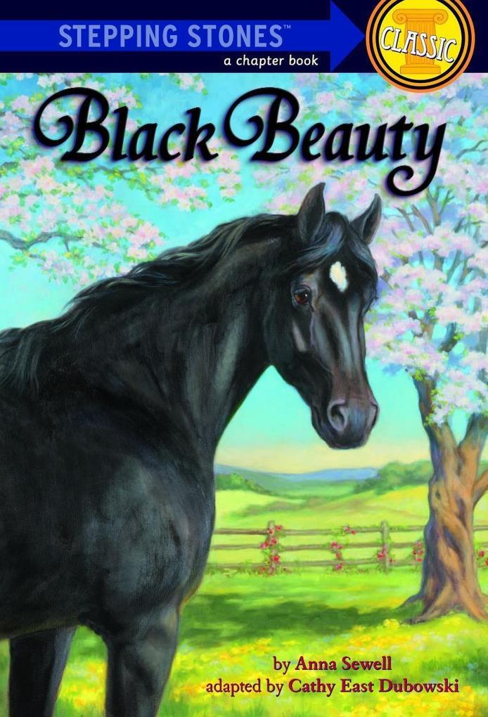 Black Beauty als Taschenbuch