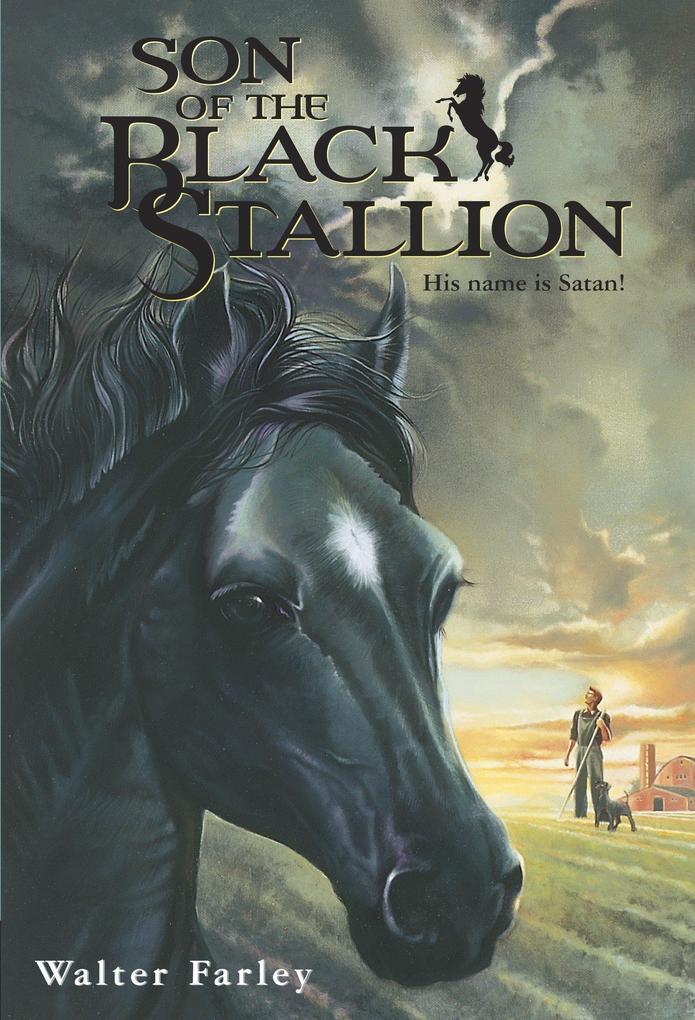 Son Of The Black Stallion als Taschenbuch