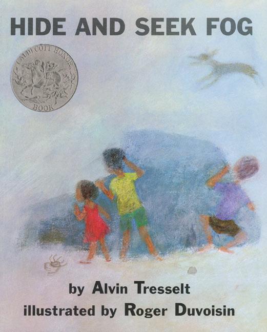 Hide and Seek Fog als Taschenbuch