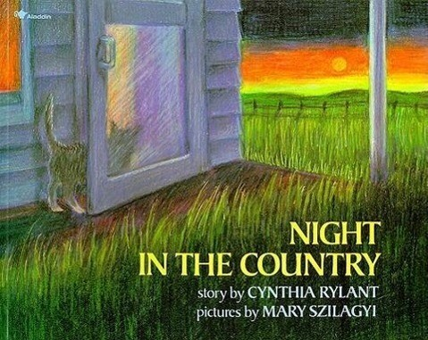 Night in the Country als Taschenbuch