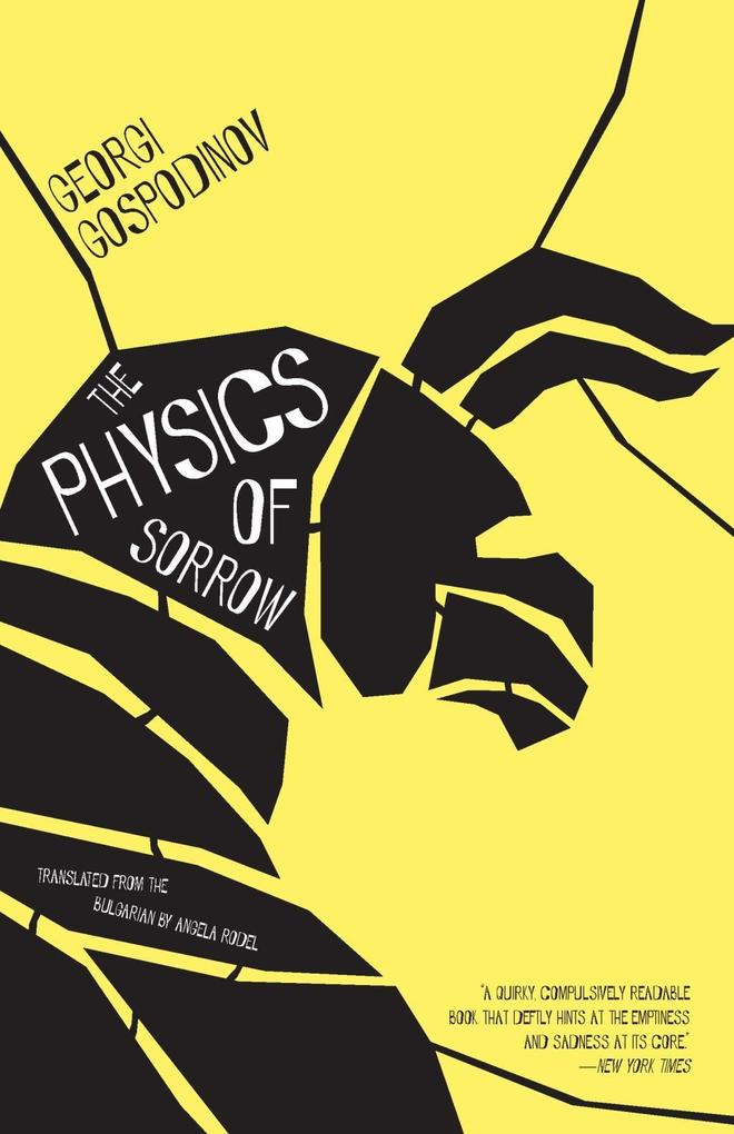 The Physics of Sorrow als eBook Download von Ge...