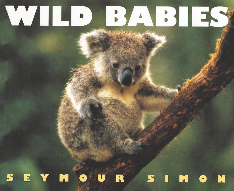 Wild Babies als Taschenbuch