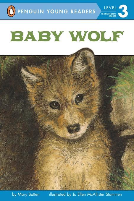 Baby Wolf als Taschenbuch