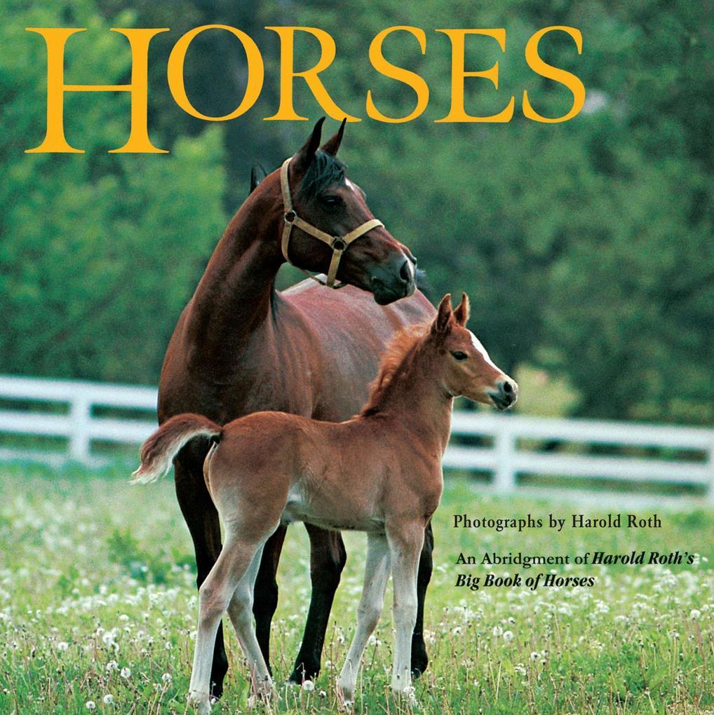 Horses als Taschenbuch