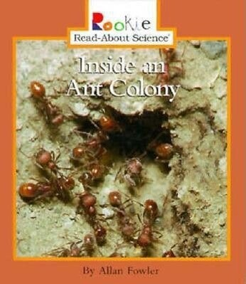 Inside an Ant Colony als Buch