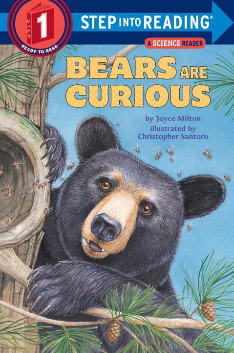 Bears are Curious als Taschenbuch