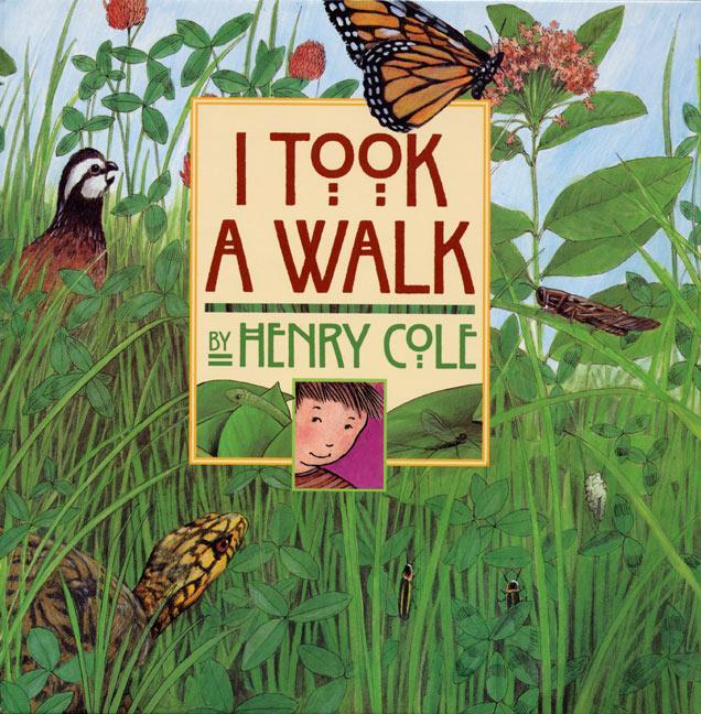 I Took a Walk als Buch