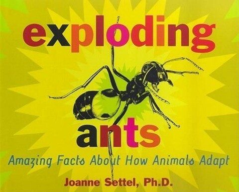Exploding Ants: Amazing Facts about How Animals Adapt als Buch