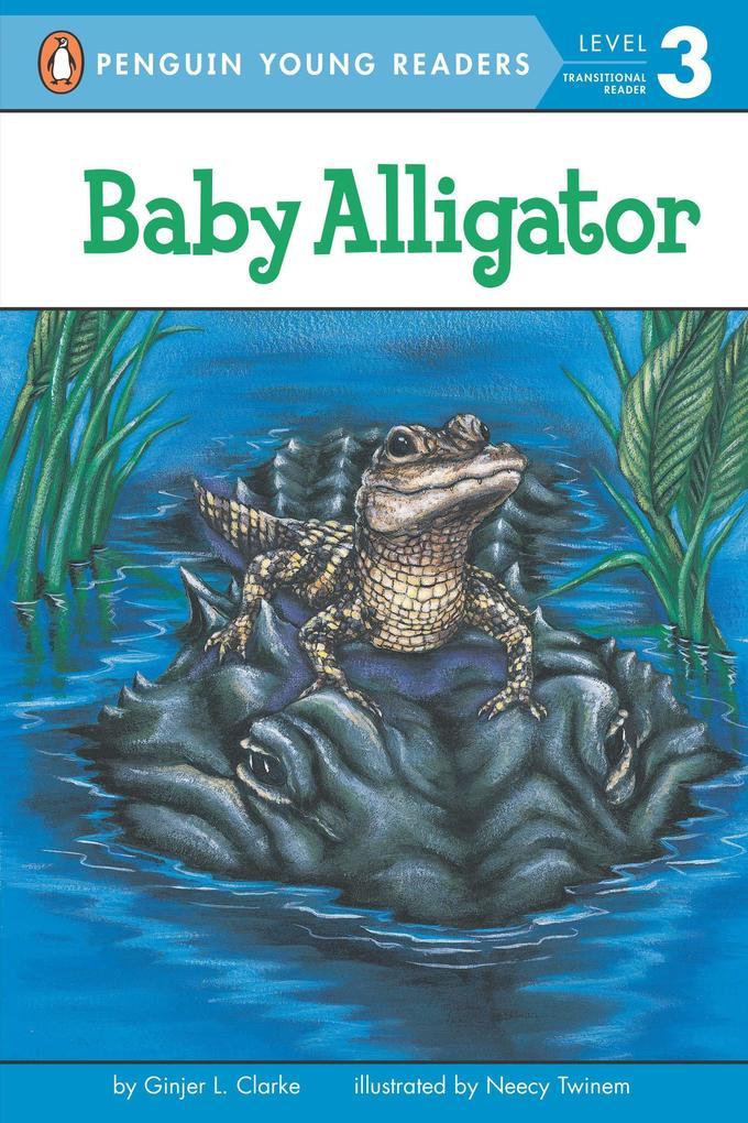 Baby Alligator als Taschenbuch
