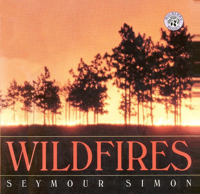 Wildfires als Taschenbuch