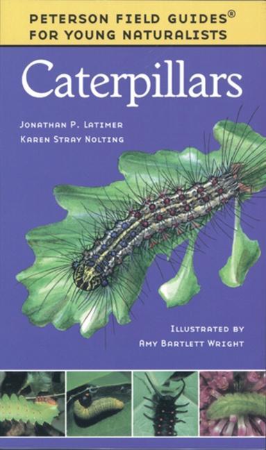 Caterpillars als Taschenbuch