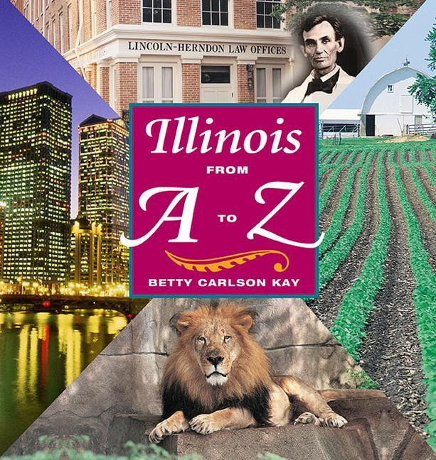 Illinois from A to Z als Buch